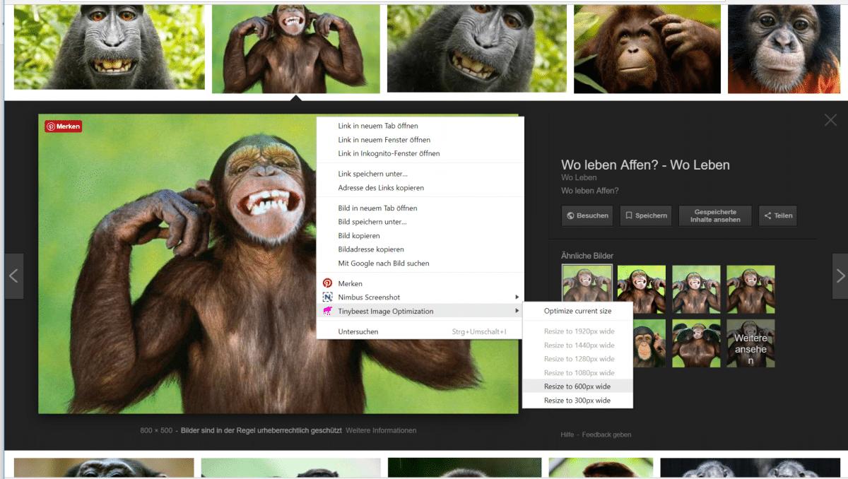 10 nützliche Chrome-Erweiterungen für Social Media Manager - Teil 2 9