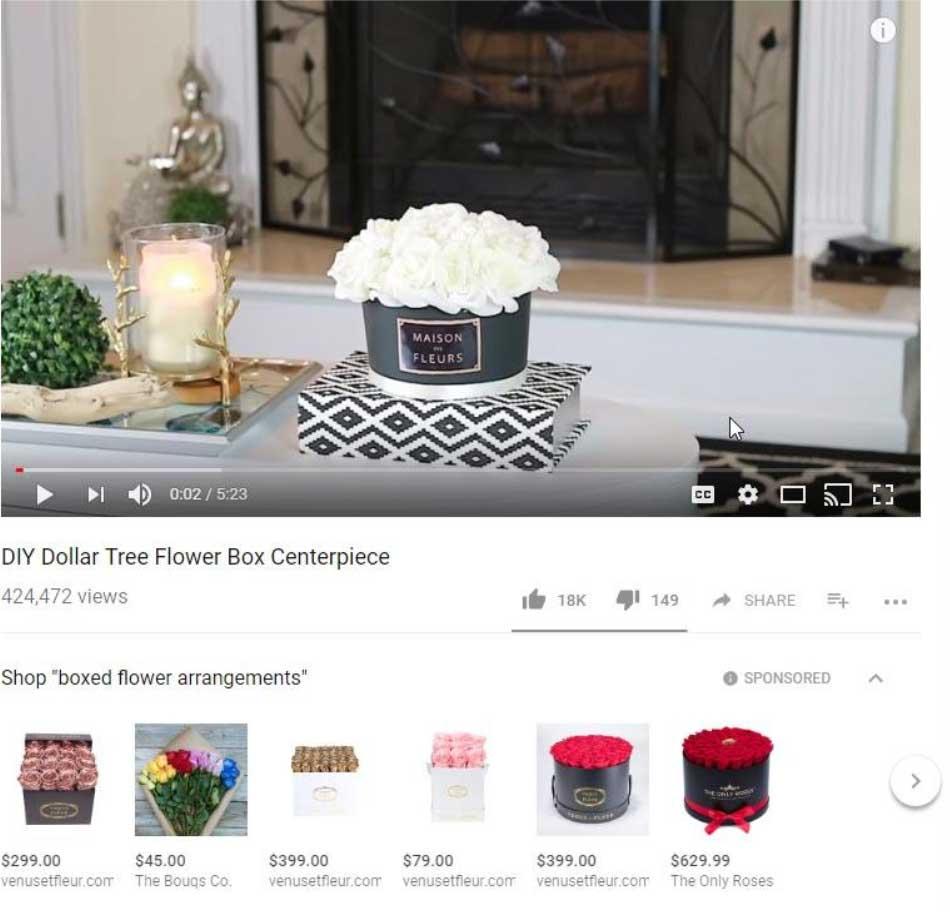 Social Media eCommerce True View Youtube