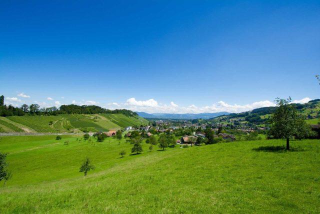St. Gallen Wiese