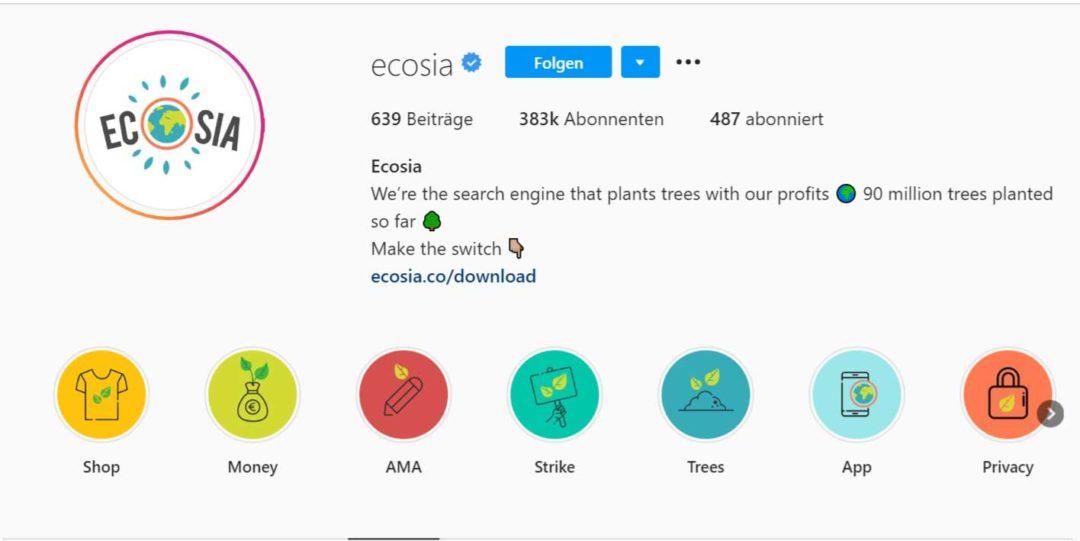 Instagram Bio Erklärend (Ecosia)